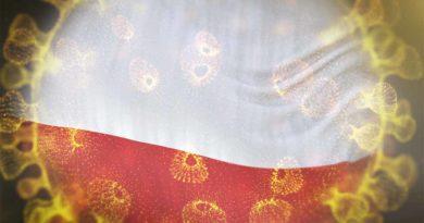 Rynek detaliczny w Polsce: rozwój e-commerce i nowe wyzwania
